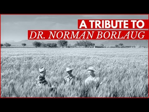 Norman Borlaug: An Agricultural Pioneer