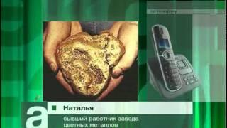 В Красноярском крае с предприятия украли 15 кг золота
