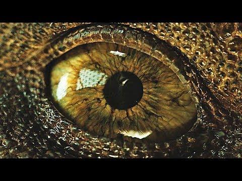 Jurassic World 2: Fallen Kingdom - Awesome