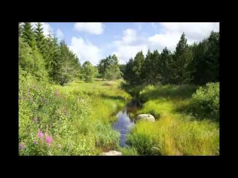 margeride - Vidéo produite par le comité de pilotage Natura 2000 du plateau de Charpal. Ce site est situé en Nord Lozère, au sud du plateau de la Margeride, et fait part...
