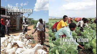 Promoting Alternatives to Migration for Ethiopian Rural Youth
