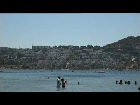 Online [Free Watch] Full Movie Gook (2017)