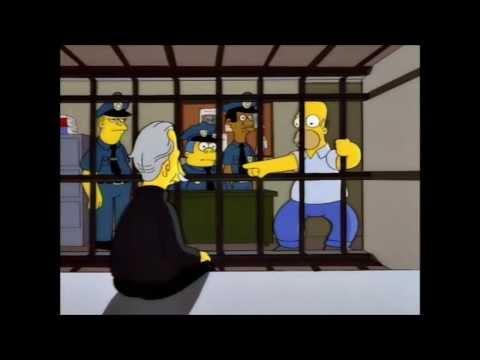 Los Simpsons, Homero canta yo atrape a el gato