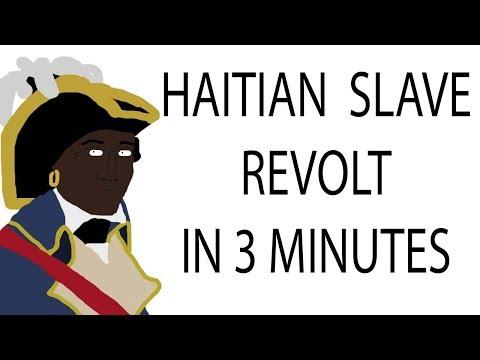 Haitian Slave Revolt   3 Minute History