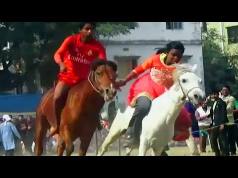 Video Tasmina Horse Racing Competition download in MP3, 3GP, MP4, WEBM, AVI, FLV January 2017