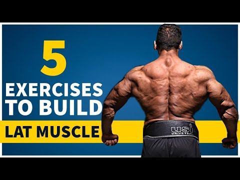 The Right way to do Lat Excercise   Lat Muscle Workout