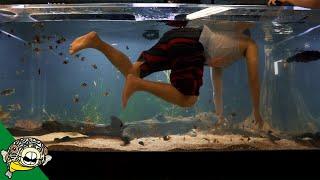 MONSTER AQUARIUM 800G by Aquarium Co-Op