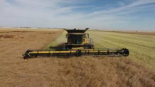 Nonton Canola Harvest 2016  Canada  Delage Farms Ltd  Markusson New Holland  Film Subtitle Indonesia Streaming Movie Download