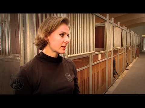 Loesdau Lessons: Basics mit Kati: Die richtige Reitausrüstung