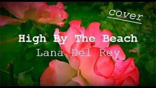 High By The Beach - Lana Del Rey (cover)