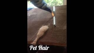 Best Pet Hair Tip!