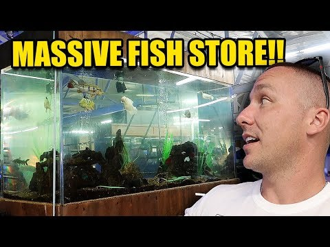 LARGEST AQUARIUM FISH STORE I HAVE EVER SEEN!!!