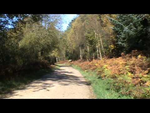 Langdale End Morra Head Wood River Derwent Round | north yorkshire  Walks