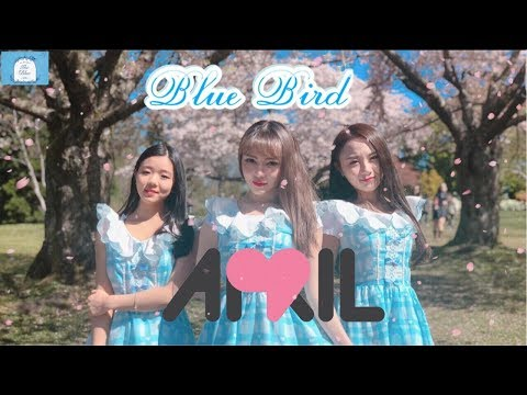[KPOP IN PUBLIC CHALLENGE] April - Blue Bird dance cover by FDS Vancouver (видео)