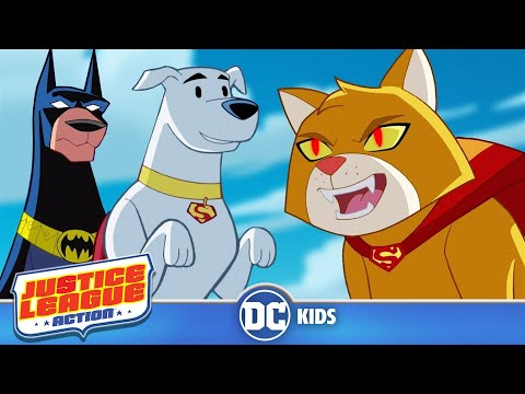 Justice League Action | Heroic Animals | DC Kids