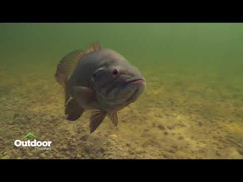 Indian River Gold - Hook N' Look Season 13 Episode 1 Trailer