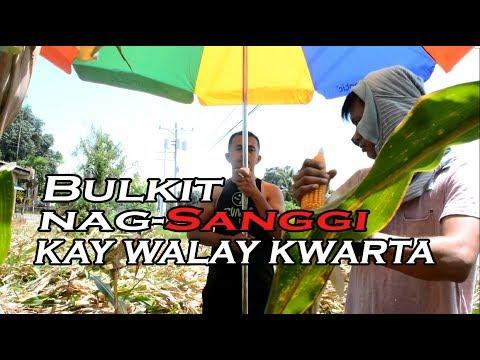 Bulkit walay Kwarta, nagSanggi og Mais