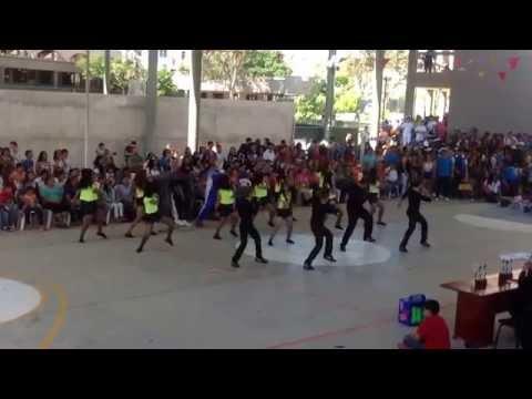 Baile icest 2014