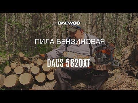 Обзор бензиновой цепной пилы Daewoo DACS 5820XT: сборка, запуск, работа