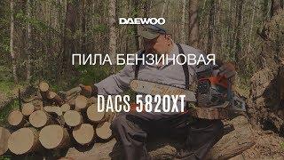 Обзор бензиновой цепной пилы Daewoo DACS 5820XT: сборка, запуск, работа * Обзоры от Андрея