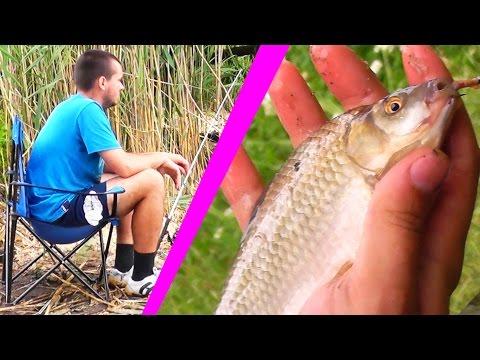 рыбалка кормушкой в прудах