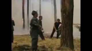 Действия при лесном пожаре - посмотрите сами и покажите детям