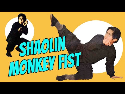 Wu Tang Collection - SHAOLIN MONKEY FIST (ENGLISH VERSION- WIDESCREEN)