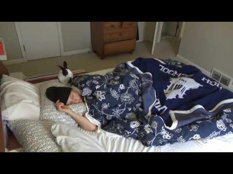 la-sveglia-del-coniglio