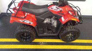 7. 2015 Arctic Cat 300