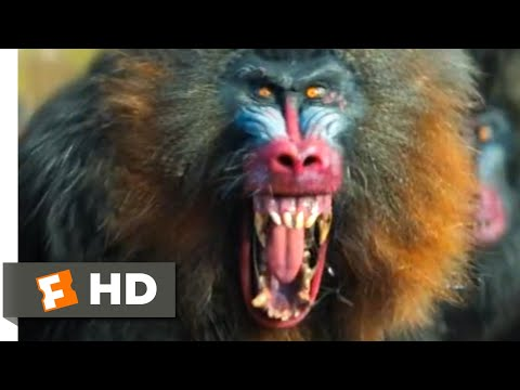 Jumanji: The Next Level (2019) - Mandrill Attack Scene (4/10) | Movieclips