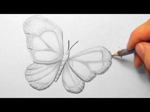 Schmetterling, zeichnen im Zeitraffer (Butterfly, drawing in fast motion)[HD]