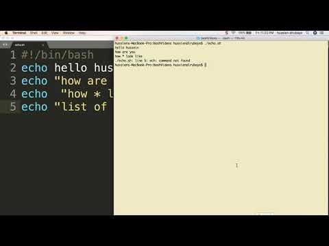 3-  Shell Scripting: echo   الطباعة