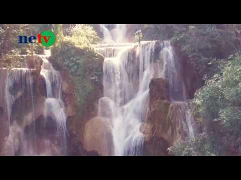 Truyền hình Thiên nhiên - Môi trường (NETV)