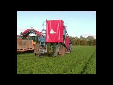 ASA-LIFT carrot harvest T-255