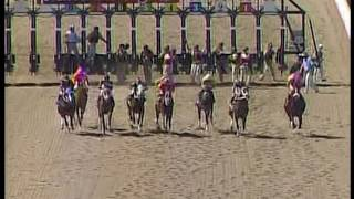 Mister Nofty goes coast to coast in Maiden win PARX 6 June 12 2016