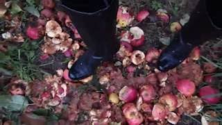 1st of 4 videos of me making apple sauce under my leather high heeled boots.  I luv how they crunched under my heels and the total mess I made - omg so naughty....