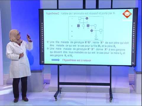 حصة مراجعة في مادة علوم الحياة و الأرض لتلاميذ البكالوريا شعبة الرياضيات | الحصة الثالثة