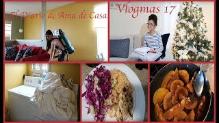 Limpiando, Cocinando y Lavando Ropa, El diario de Ama De Casa!!!
