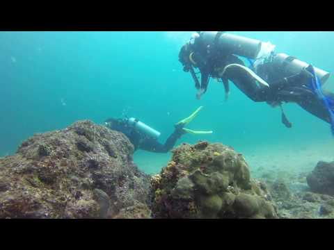 Scuba diving Isla de la Plata - Fondo Azul