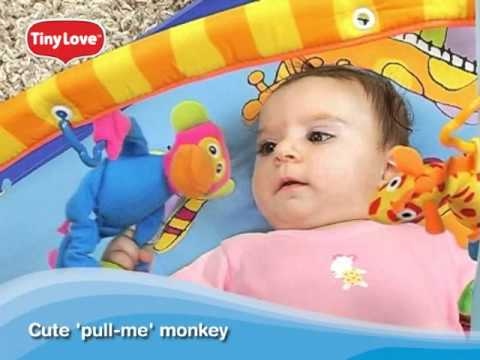 Is The Tiny Love Gymini Super Deluxe Play Gym Suitable For Small Children?