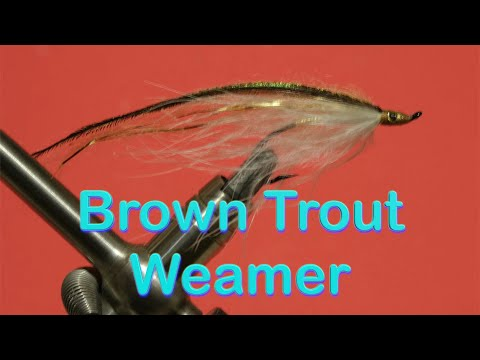 Streamer Fly - the Brown Trout Weamer (видео)