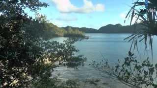 SCHÖNER TAUCHEN Gruppenreise Jan. 2014 auf der S/Y Palau Siren zu den Spektakulären Tauchplätzen rund um Palau!