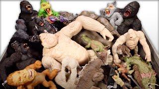 Video New Huge Box Rampage Movie Toys & King Kong Skull Island Toys Vs Jurassic World fallen Kingdom MP3, 3GP, MP4, WEBM, AVI, FLV Juli 2018