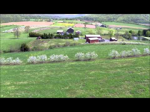 Belleville Drone Video