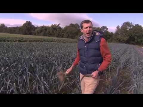 Moyleabbey 5 Acre Farmer