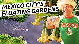 How Mexico City's Mysterious Floating Gardens Helped Feed the City For Hundreds of Years by Eater