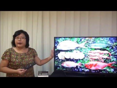 Sony LCD TV BRAVIA KDL-W650D
