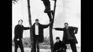 Have Love, Will Travel - The Sonics -