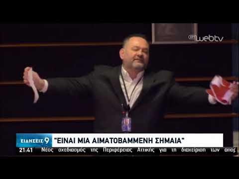 Ο Γ. Λαγός έσκισε τουρκική σημαία στο Ευρωκοινοβ. – Κατηγορηματική καταδίκη από το ΥΠΕΞ|30/01/20|ΕΡΤ