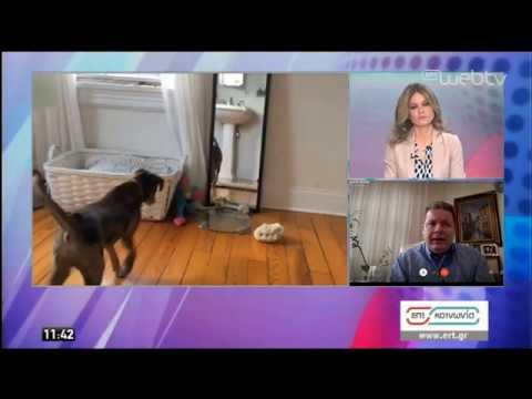 Κτηνίατρος: «Δεν ανησυχούμε για τα κατοικίδια» | 06/04/2020 | ΕΡΤ